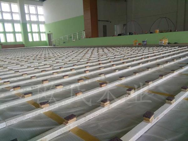 汕头特殊教育学校篮球馆木地板案例
