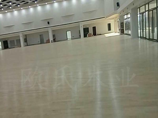 淮安富士康员工活动中心体育馆乐虎app手机版