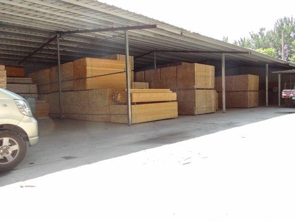体育场馆木地板每平方价格